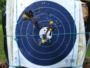 Grouping of wooden arrows on NFAA target face